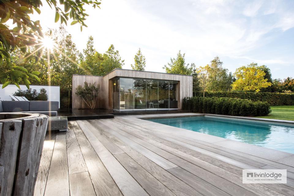 Modernes Poolhaus in HOTwood Esche in Zwijnaarde